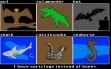 logo Emulators Animal Kingdom