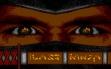 logo Emulators Last Ninja , The