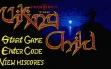 Logo Emulateurs PROPHECY 1 : THE VIKING CHILD [STX]