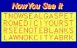 logo Emulators Now You See It (1990)