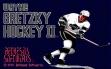 logo Emulators Wayne Gretzky Hockey 2 (1991)