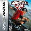 logo Emulators Tony Hawk's Downhill Jam [USA]