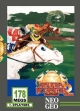 logo Emulators STAKES WINNER 2