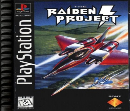 The Raiden Project image