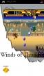 logo Emulators Winds Of Thunder