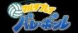 logo Emulators Multi Play Volleyball [Japan]