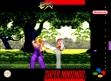 logo Emulators Street Fighter EX
