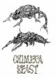 logo Emulators CHIMERA BEAST [JAPAN] (PROTO)