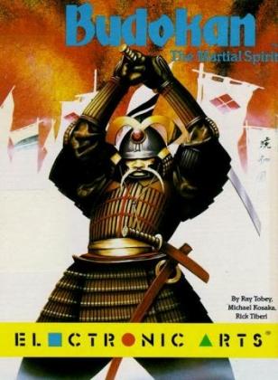 BUDOKAN : THE MARTIAL SPIRIT image